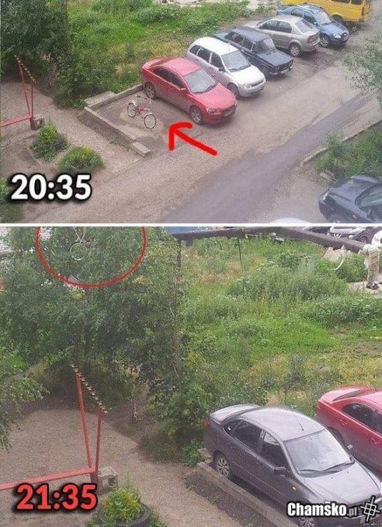 0_1_84043_Wyjebany_rower_przez_pluszowymis.jpg