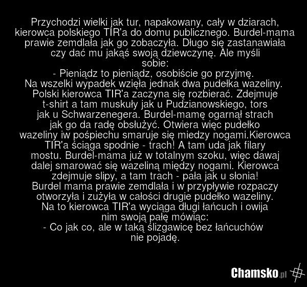0_1_87852_Przygoda_w_burdelu_przez_pluszowymis.png